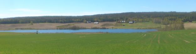 Långsjöns norra ände våren 2017.